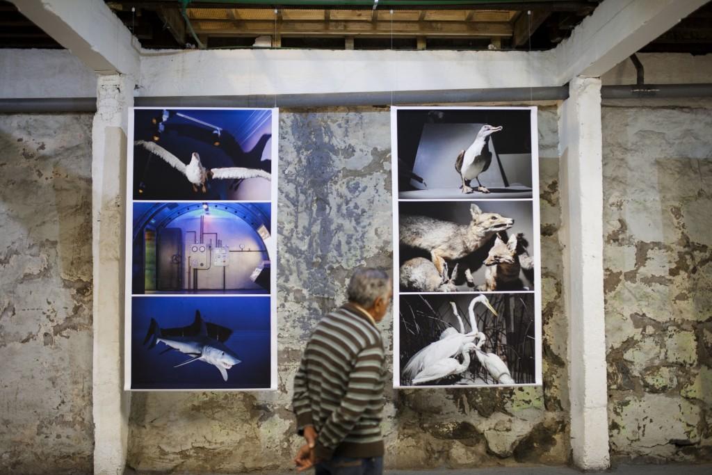 Inauguración de las Exposiciones de los Workshops Internacionales, Claudine Doury y Paolo Verzone. Fotos de Patricio Miranda.